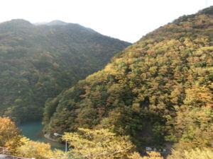 寸又峡の紅葉