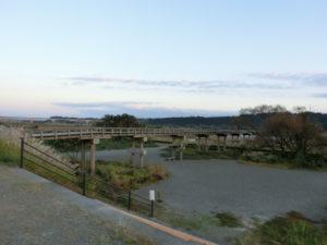 蓬莱橋と大井川