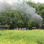 成田ゆめ牧場のトロッコ列車