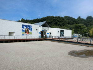 相模川ふれあい科学館前の水遊び