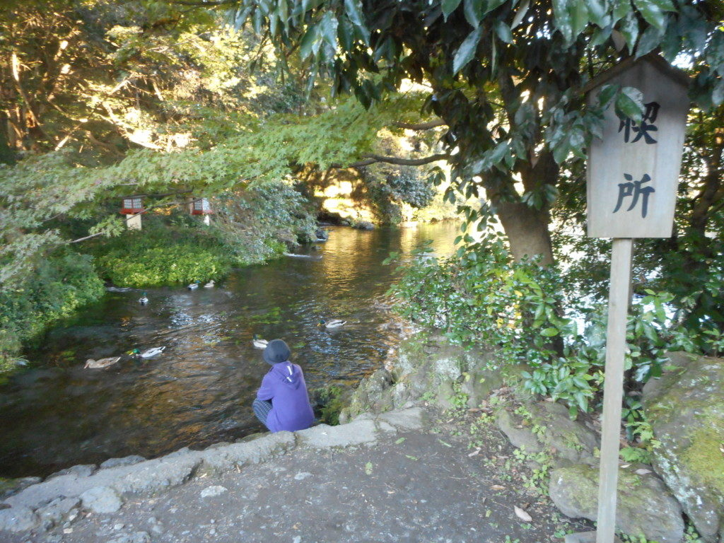 涌玉池の禊所