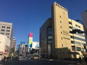 honatsugi