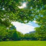 akishima-park