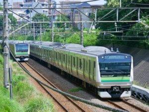 jrsagamihara