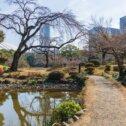 koishikawa-park
