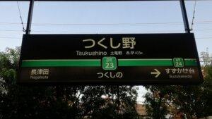 tsukushino